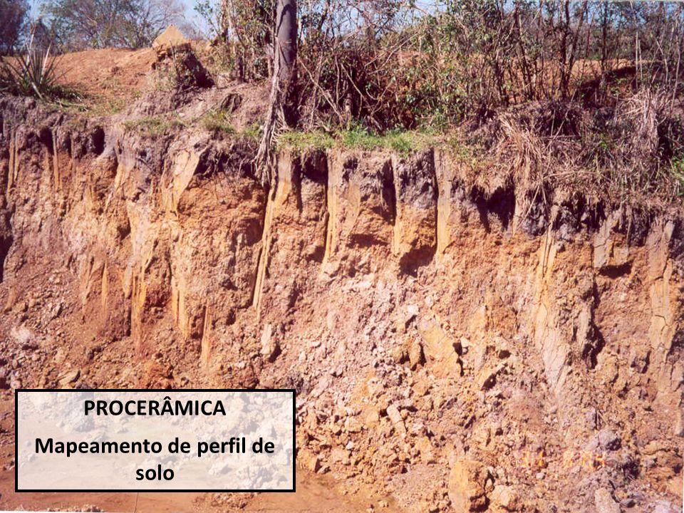 PROCERÂMICA Mapeamento de perfil de solo
