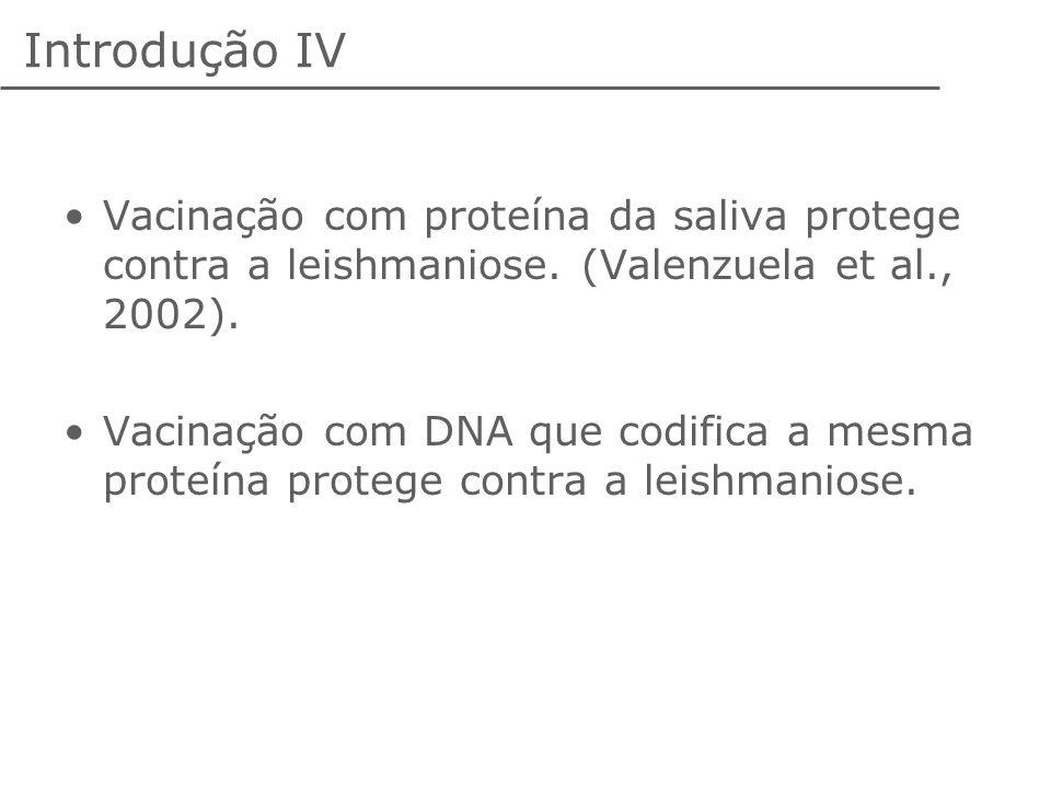 Introdução IV Vacinação com proteína da saliva protege contra a leishmaniose. (Valenzuela et al., 2002). Vacinação com DNA que codifica a mesma proteí