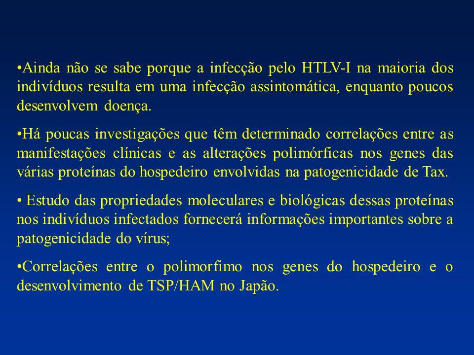 IL-6 Células B Células T Células T citotóxicas Células tronco hematopoiéticas Diferenciação e secreção de anticorpos Produção de IL-2 e de receptor de IL-2 Atividade estimuladora de colônia Potencializa a diferenciação na presença de IL-2 e IFN-  Co-estimulante  IL-6 http://adams.mgh.harvard.edu/Reeves/Research%20Images/Cytokinealign.jpg6 http://www.nature.com/emboj/journal/v16/n5/thumbs/7590092f1.jpg