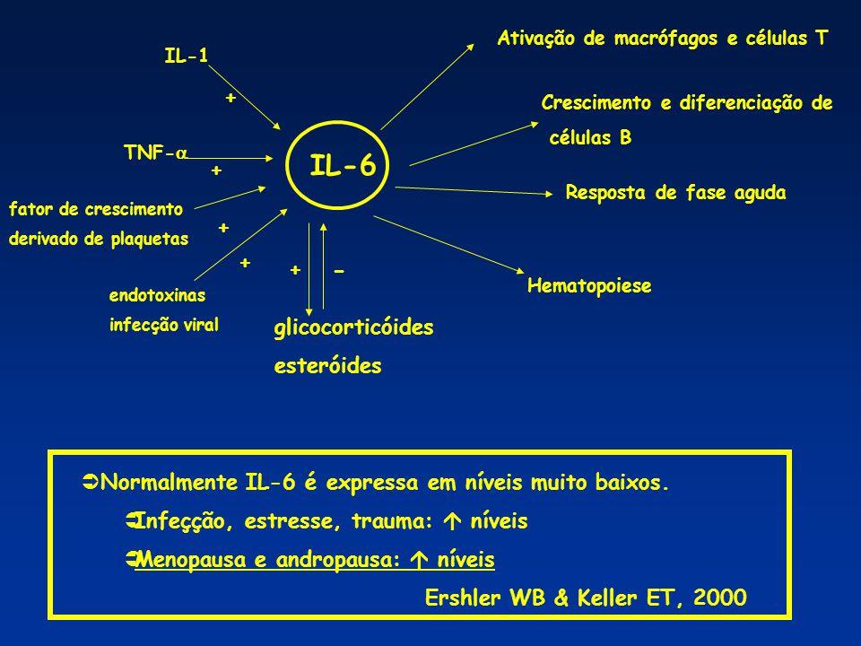  Vários estudos têm mostrado correlação: polimorfismos em genes de citocinas, entre elas IL-6, e susceptibilidade/ resistência a algumas doenças  lupus, artrite reumatóide, diabetes, artrite juvenil  Polimorfismos de um único nucleotídeo: SNP  podem afetar a transcrição e a produção de citocinas fenótipos alto, intermediário e baixo produtor.