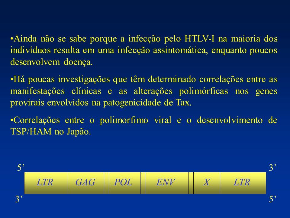 U3RU5 21-pb enhancer ATT TATA box ESTRUTURA DO LTR DO HTLV-I Sinal de poliadenilação poliadenilação