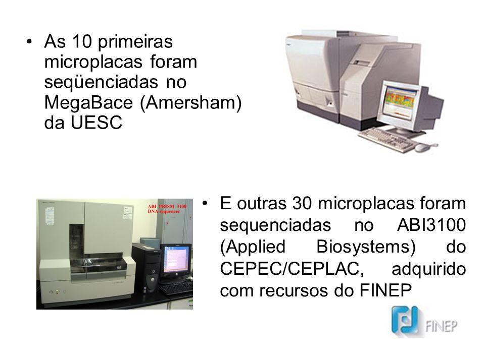 As 10 primeiras microplacas foram seqüenciadas no MegaBace (Amersham) da UESC E outras 30 microplacas foram sequenciadas no ABI3100 (Applied Biosystems) do CEPEC/CEPLAC, adquirido com recursos do FINEP