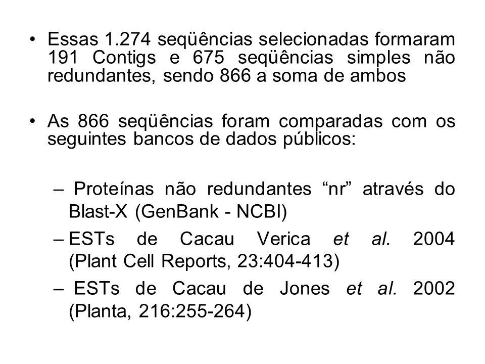 Essas 1.274 seqüências selecionadas formaram 191 Contigs e 675 seqüências simples não redundantes, sendo 866 a soma de ambos As 866 seqüências foram comparadas com os seguintes bancos de dados públicos: – Proteínas não redundantes nr através do Blast-X (GenBank - NCBI) –ESTs de Cacau Verica et al.