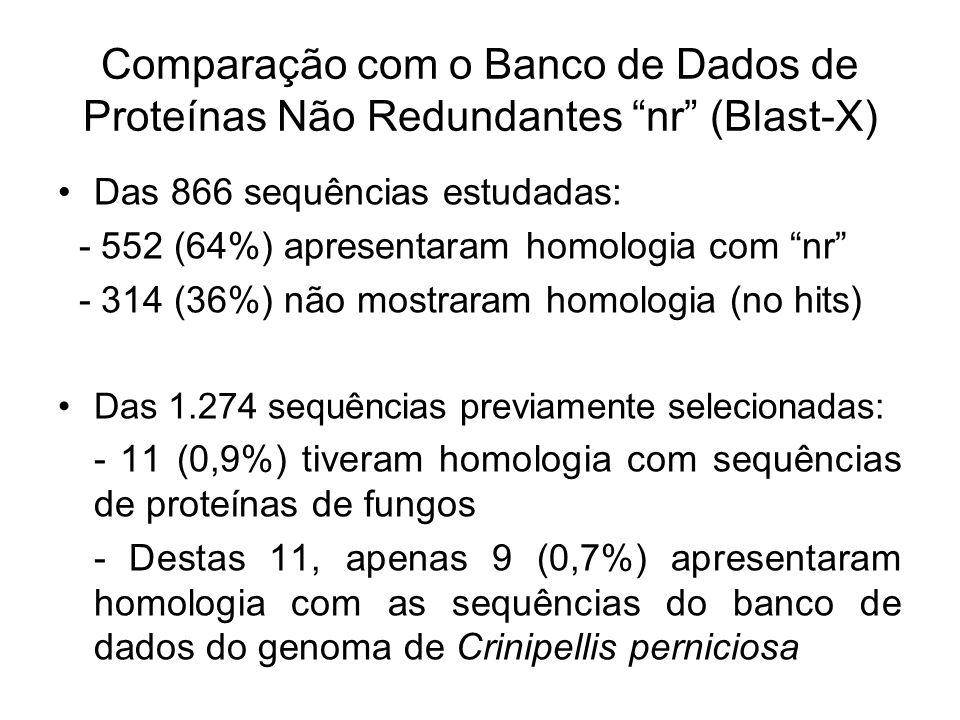 Comparação com o Banco de Dados de Proteínas Não Redundantes nr (Blast-X) Das 866 sequências estudadas: - 552 (64%) apresentaram homologia com nr - 314 (36%) não mostraram homologia (no hits) Das 1.274 sequências previamente selecionadas: - 11 (0,9%) tiveram homologia com sequências de proteínas de fungos - Destas 11, apenas 9 (0,7%) apresentaram homologia com as sequências do banco de dados do genoma de Crinipellis perniciosa