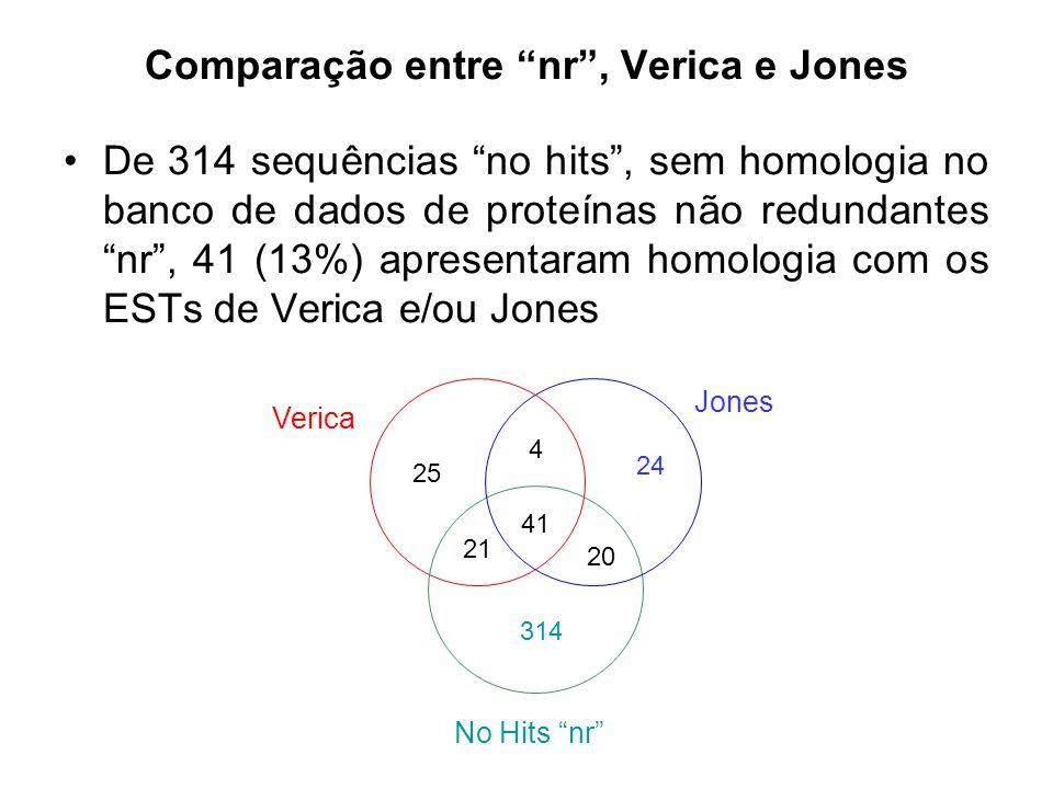 Comparação entre nr , Verica e Jones De 314 sequências no hits , sem homologia no banco de dados de proteínas não redundantes nr , 41 (13%) apresentaram homologia com os ESTs de Verica e/ou Jones 25 24 314 41 21 20 4 Jones Verica No Hits nr