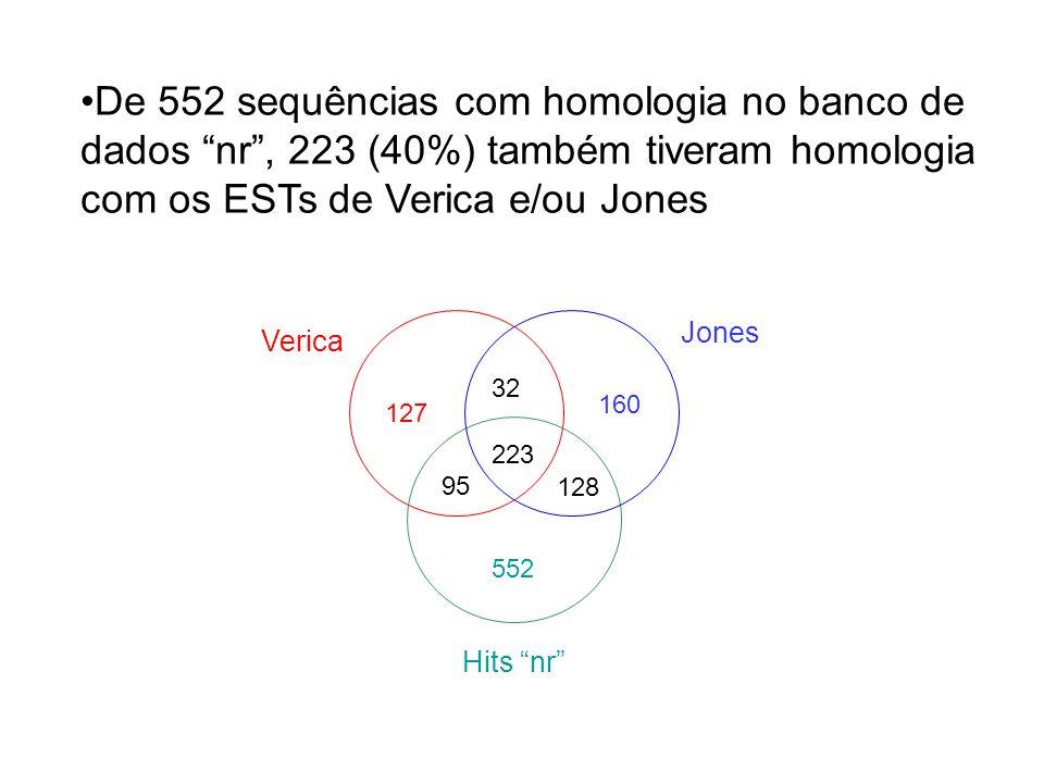 127 160 32 223 552 95 128 De 552 sequências com homologia no banco de dados nr , 223 (40%) também tiveram homologia com os ESTs de Verica e/ou Jones Verica Jones Hits nr