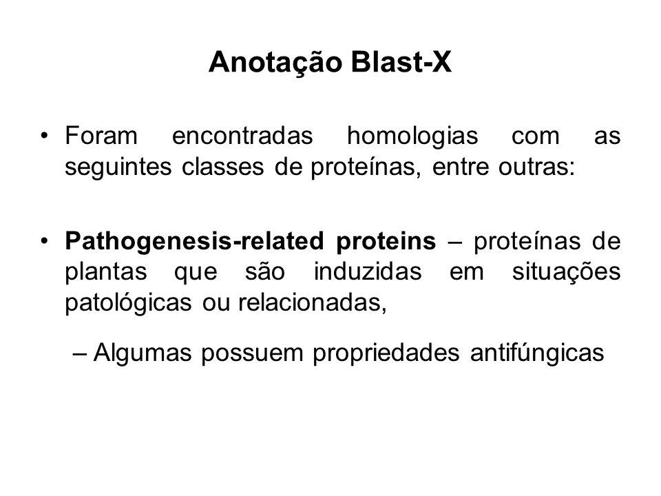 Foram encontradas homologias com as seguintes classes de proteínas, entre outras: Pathogenesis-related proteins – proteínas de plantas que são induzidas em situações patológicas ou relacionadas, –Algumas possuem propriedades antifúngicas Anotação Blast-X