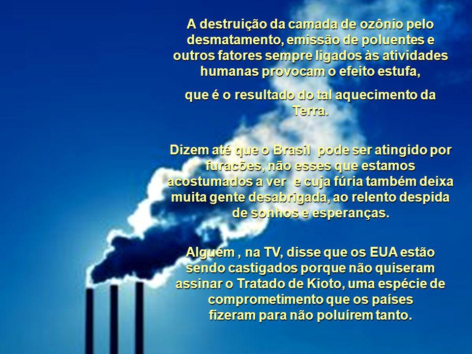 No Brasil nunca tivemos essa nitidez na mudança das estações porque é um país tropical, não passa pelo inverno abaixo de zero e nem pela neve. Mas gar
