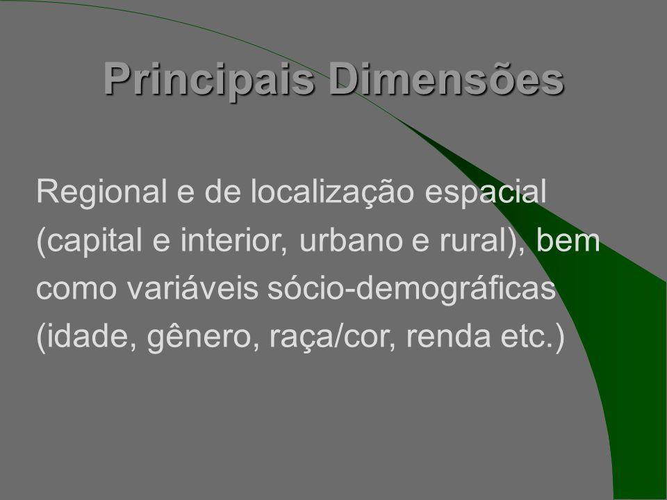 Principais Dimensões Regional e de localização espacial (capital e interior, urbano e rural), bem como variáveis sócio-demográficas (idade, gênero, raça/cor, renda etc.)