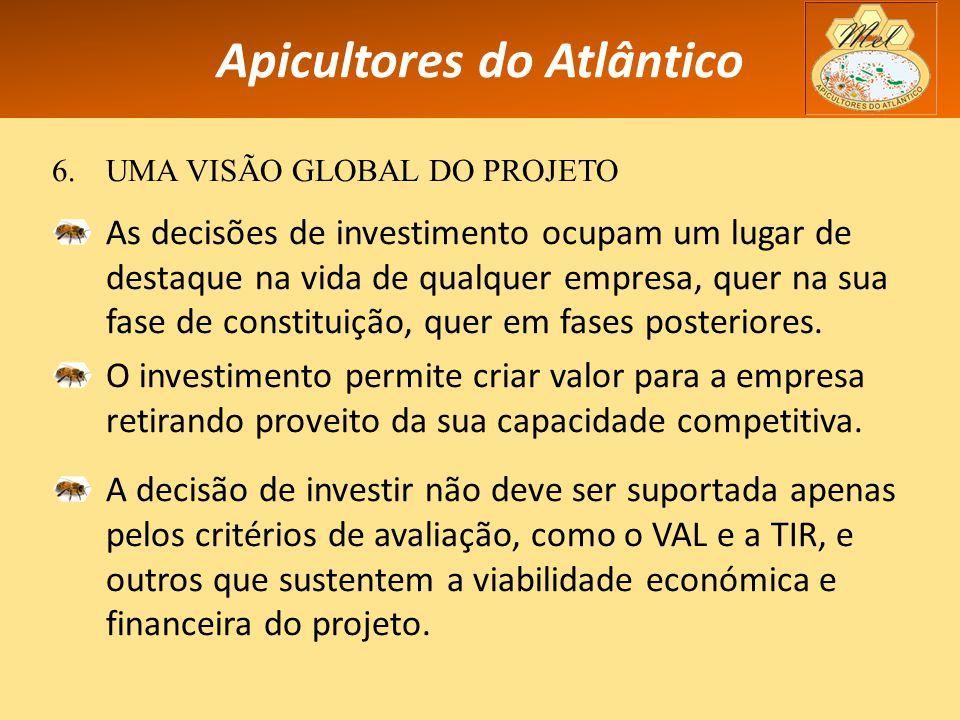 Apicultores do Atlântico 6.UMA VISÃO GLOBAL DO PROJETO As decisões de investimento ocupam um lugar de destaque na vida de qualquer empresa, quer na sua fase de constituição, quer em fases posteriores.