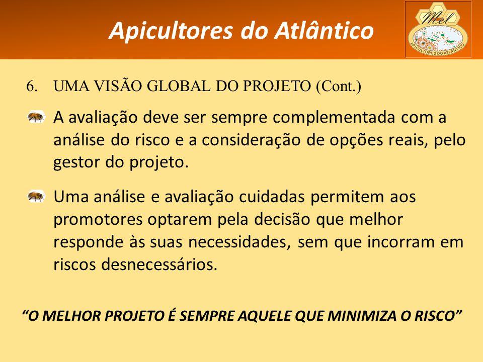 Apicultores do Atlântico 6.UMA VISÃO GLOBAL DO PROJETO (Cont.) A avaliação deve ser sempre complementada com a análise do risco e a consideração de opções reais, pelo gestor do projeto.