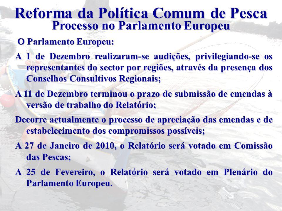 O Parlamento Europeu: O Parlamento Europeu: A 1 de Dezembro realizaram-se audições, privilegiando-se os representantes do sector por regiões, através