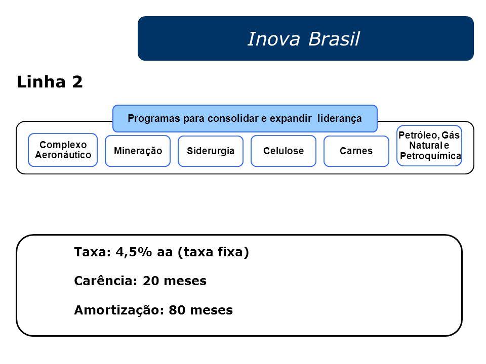 Inova Brasil Taxa: 4,5% aa (taxa fixa) Carência: 20 meses Amortização: 80 meses Programas para consolidar e expandir liderança Siderurgia Celulose Car