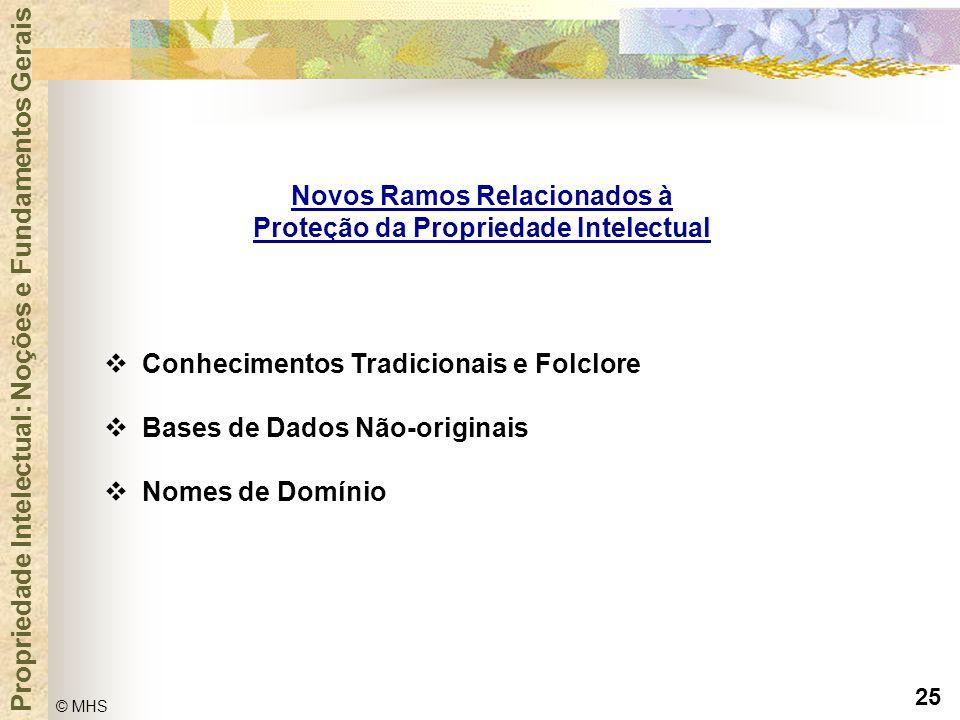 25 © MHS Propriedade Intelectual: Noções e Fundamentos Gerais Novos Ramos Relacionados à Proteção da Propriedade Intelectual  Conhecimentos Tradicion