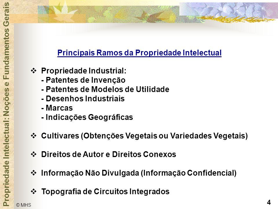 4 © MHS Propriedade Intelectual: Noções e Fundamentos Gerais Principais Ramos da Propriedade Intelectual  Propriedade Industrial: - Patentes de Inven