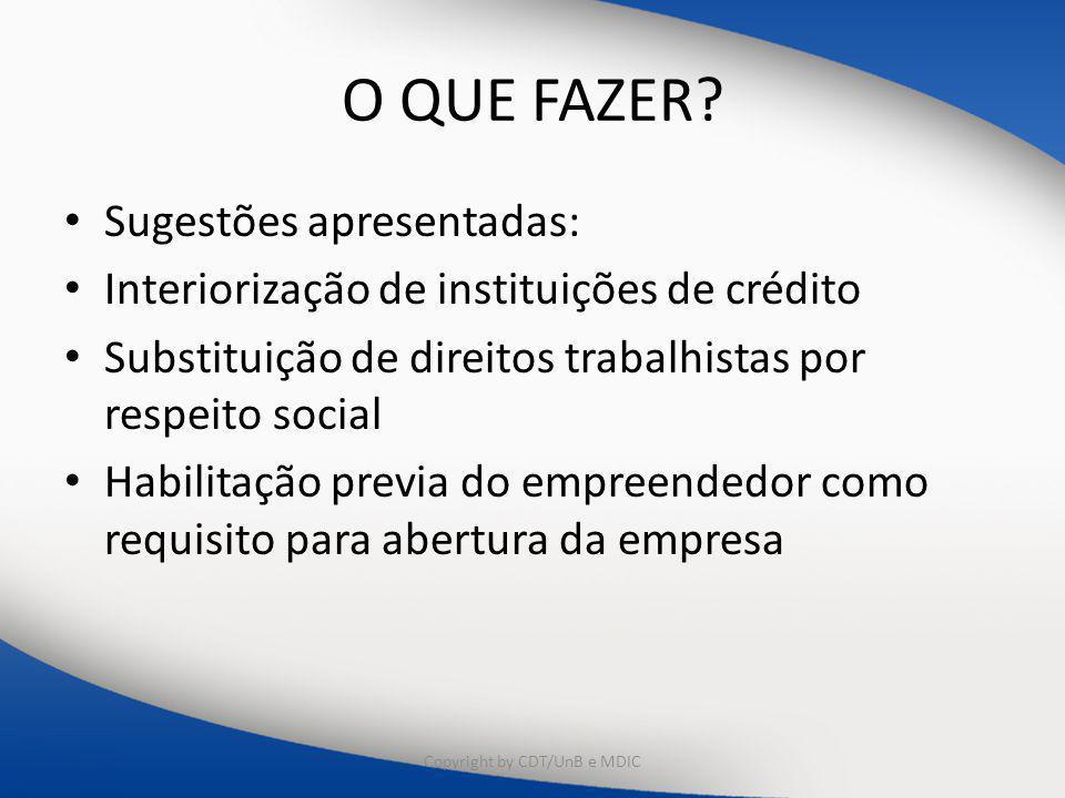 O QUE FAZER? Sugestões apresentadas: Interiorização de instituições de crédito Substituição de direitos trabalhistas por respeito social Habilitação p