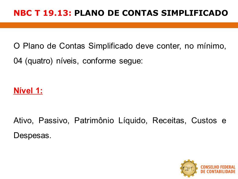 NBC T 19.13: PLANO DE CONTAS SIMPLIFICADO O Plano de Contas Simplificado deve conter, no mínimo, 04 (quatro) níveis, conforme segue: Nível 1: Ativo, P