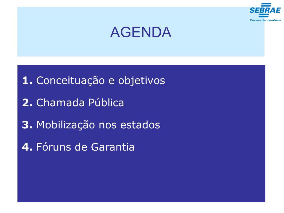 AGENDA 1. Conceituação e objetivos 2. Chamada Pública 3.