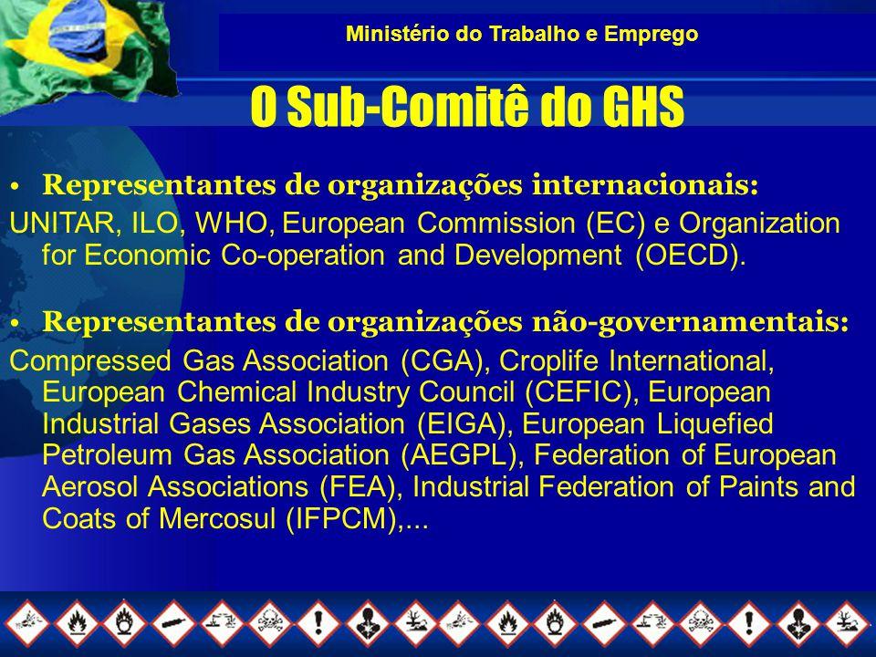 Ministério do Trabalho e Emprego O Sub-Comitê do GHS Representantes de organizações internacionais: UNITAR, ILO, WHO, European Commission (EC) e Organization for Economic Co-operation and Development (OECD).