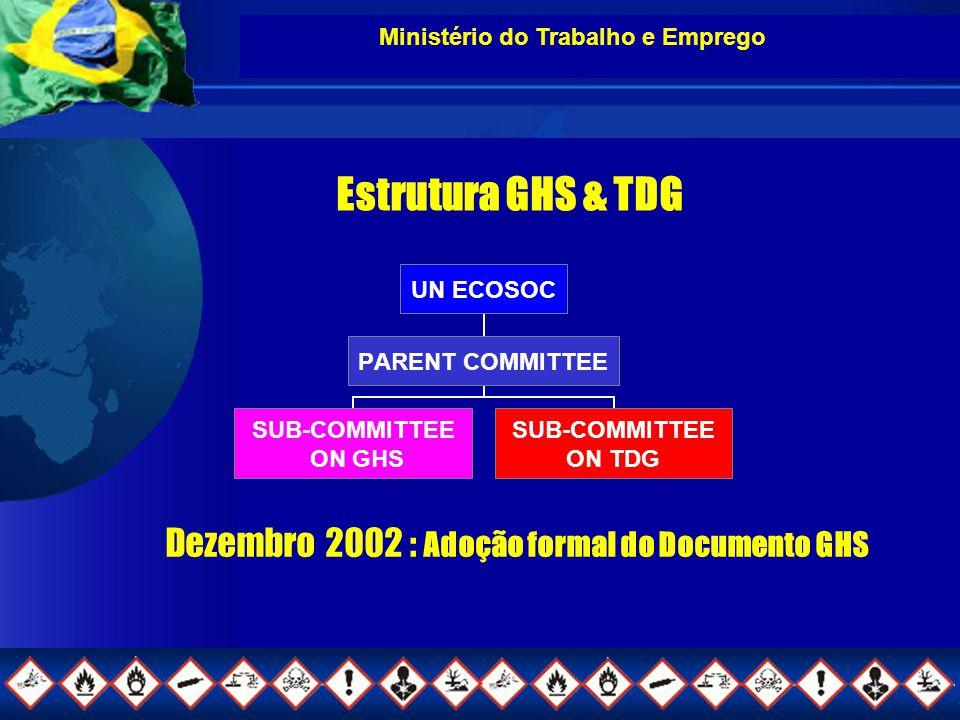 Ministério do Trabalho e Emprego Dezembro 2002 : Adoção formal do Documento GHS UN ECOSOC PARENT COMMITTEE SUB- COMMITTEE ON GHS SUB- COMMITTEE ON TDG Estrutura GHS & TDG