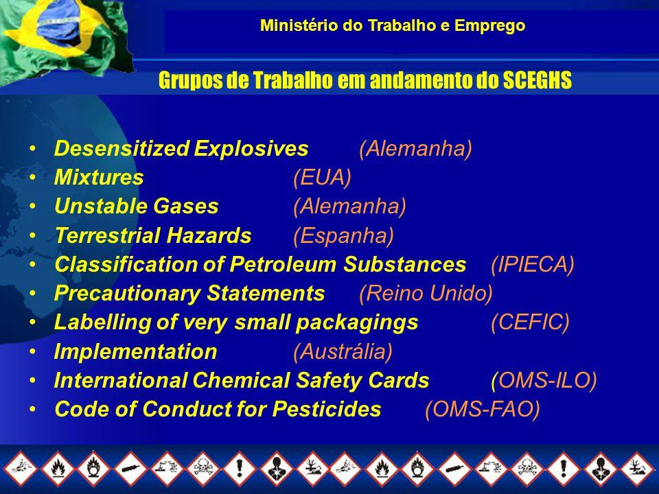 Ministério do Trabalho e Emprego Grupos de Trabalho em andamento do SCEGHS Desensitized Explosives (Alemanha) Mixtures(EUA) Unstable Gases (Alemanha) Terrestrial Hazards (Espanha) Classification of Petroleum Substances (IPIECA) Precautionary Statements (Reino Unido) Labelling of very small packagings (CEFIC) Implementation (Austrália) International Chemical Safety Cards (OMS-ILO) Code of Conduct for Pesticides (OMS-FAO)