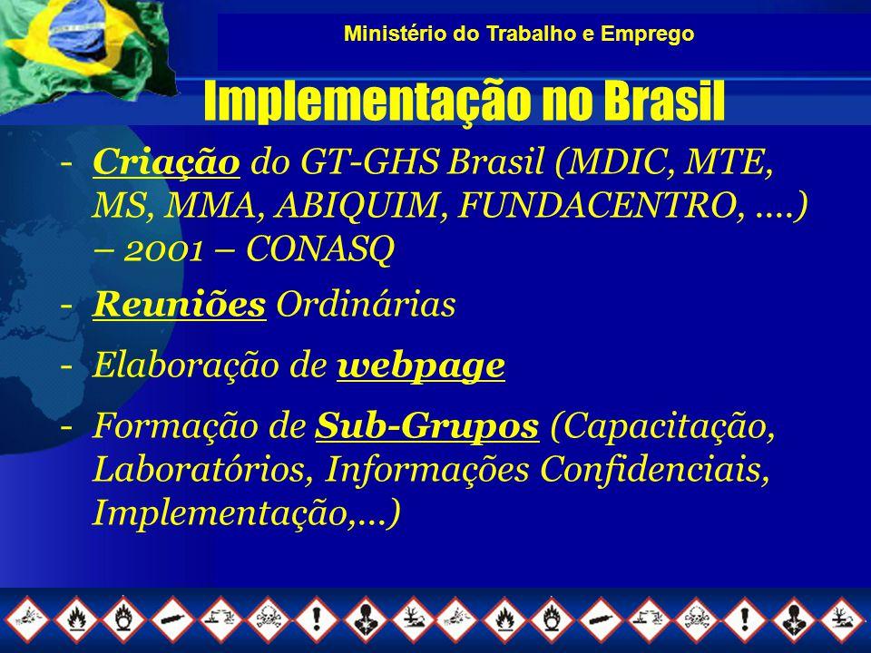 Ministério do Trabalho e Emprego Implementação no Brasil -Criação do GT-GHS Brasil (MDIC, MTE, MS, MMA, ABIQUIM, FUNDACENTRO,....) – 2001 – CONASQ -Reuniões Ordinárias -Elaboração de webpage -Formação de Sub-Grupos (Capacitação, Laboratórios, Informações Confidenciais, Implementação,...)