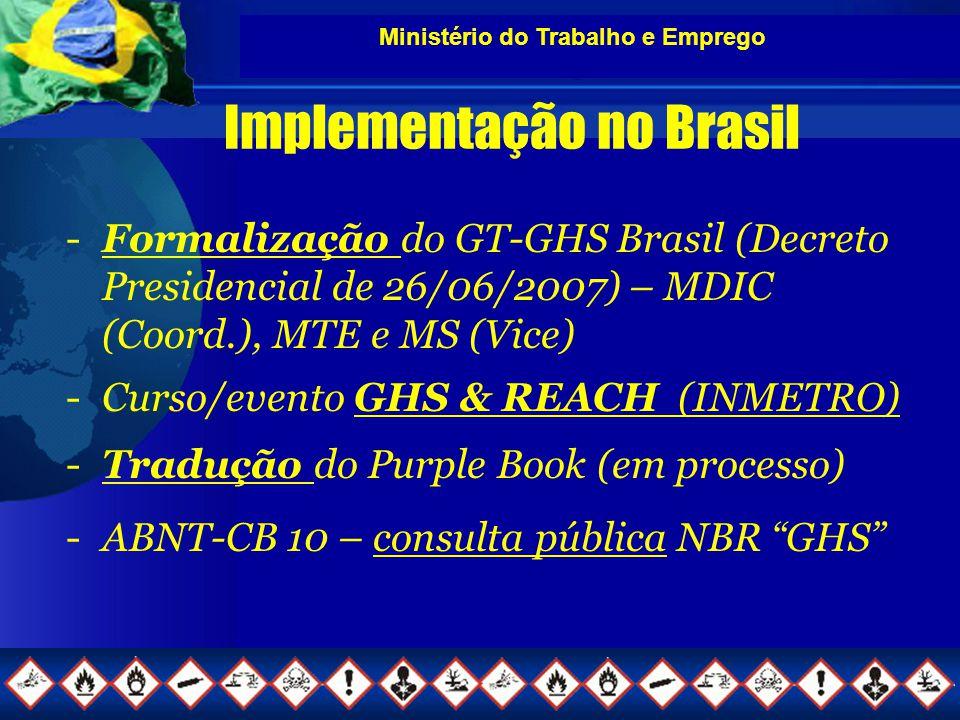 Ministério do Trabalho e Emprego Implementação no Brasil -Formalização do GT-GHS Brasil (Decreto Presidencial de 26/06/2007) – MDIC (Coord.), MTE e MS (Vice) -Curso/evento GHS & REACH (INMETRO) -Tradução do Purple Book (em processo) -ABNT-CB 10 – consulta pública NBR GHS