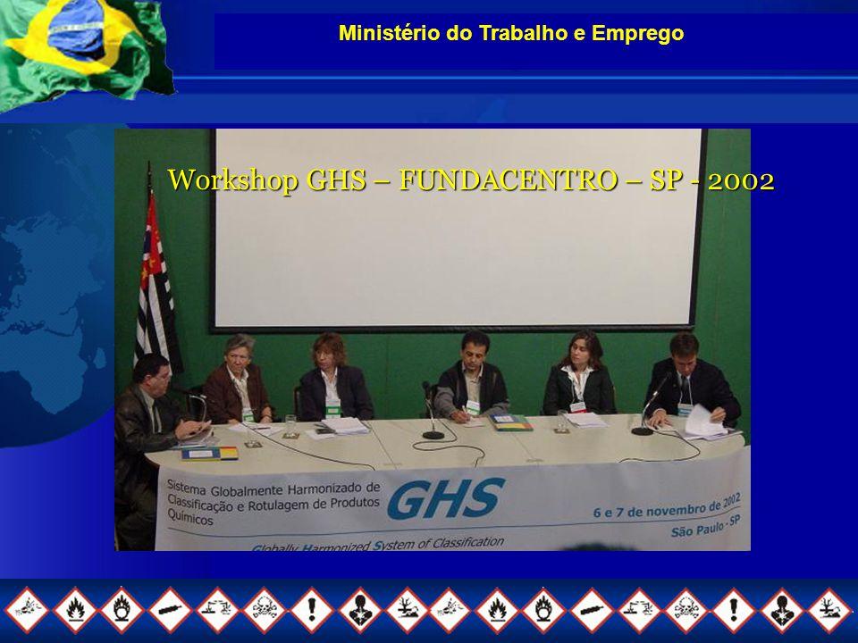 Ministério do Trabalho e Emprego Workshop GHS – FUNDACENTRO – SP - 2002