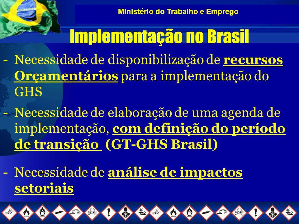Ministério do Trabalho e Emprego Implementação no Brasil -Necessidade de disponibilização de recursos Orçamentários para a implementação do GHS -Necessidade de elaboração de uma agenda de implementação, com definição do período de transição (GT-GHS Brasil) -Necessidade de análise de impactos setoriais