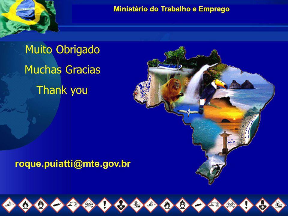 Ministério do Trabalho e Emprego Muito Obrigado Muchas Gracias Thank you roque.puiatti@mte.gov.br