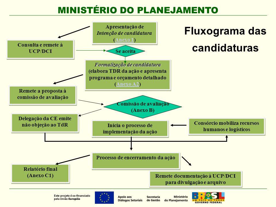 MINISTÉRIO DO PLANEJAMENTO Este projeto é co-financiado pela União Européia Este projeto é co-financiado pela União européia Formalização de candidatu