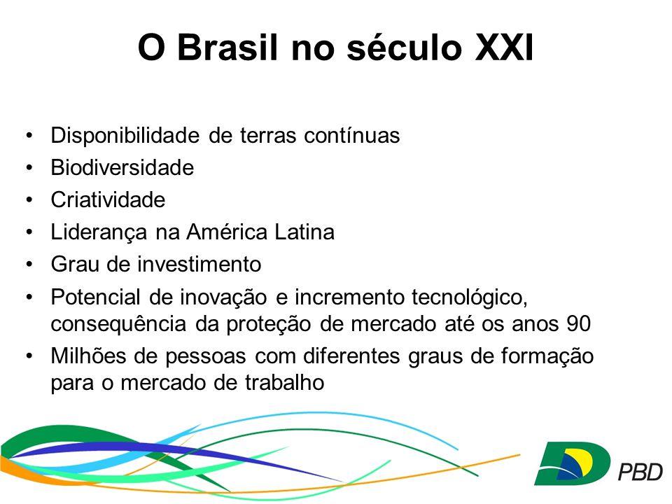 Disponibilidade de terras contínuas Biodiversidade Criatividade Liderança na América Latina Grau de investimento Potencial de inovação e incremento tecnológico, consequência da proteção de mercado até os anos 90 Milhões de pessoas com diferentes graus de formação para o mercado de trabalho O Brasil no século XXI