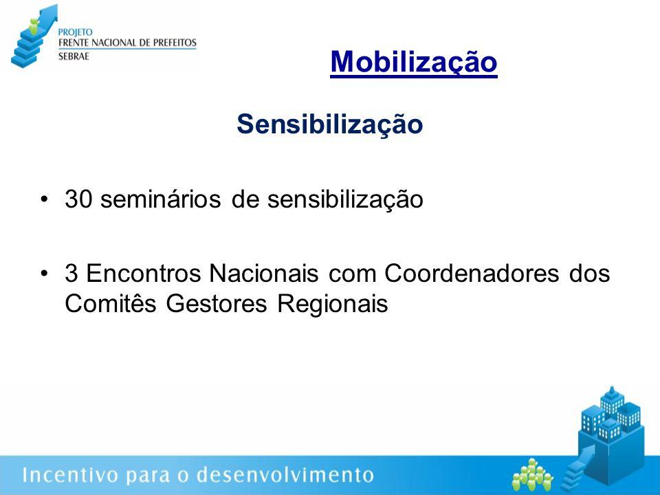Mobilização Sensibilização 30 seminários de sensibilização 3 Encontros Nacionais com Coordenadores dos Comitês Gestores Regionais