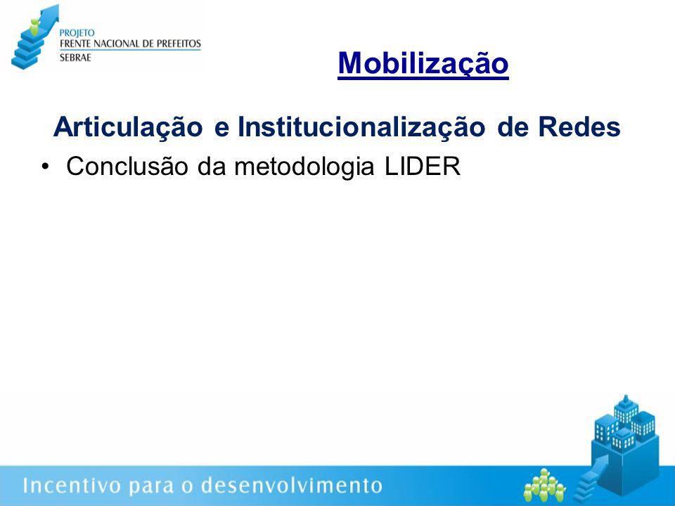 Mobilização Articulação e Institucionalização de Redes Conclusão da metodologia LIDER
