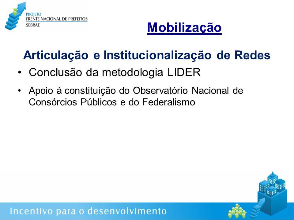 Mobilização Articulação e Institucionalização de Redes Conclusão da metodologia LIDER Apoio à constituição do Observatório Nacional de Consórcios Públicos e do Federalismo