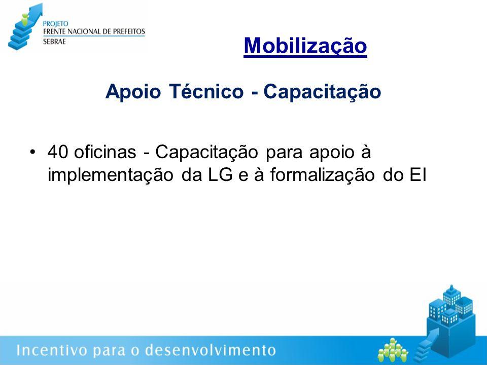 Mobilização Apoio Técnico - Capacitação 40 oficinas - Capacitação para apoio à implementação da LG e à formalização do EI