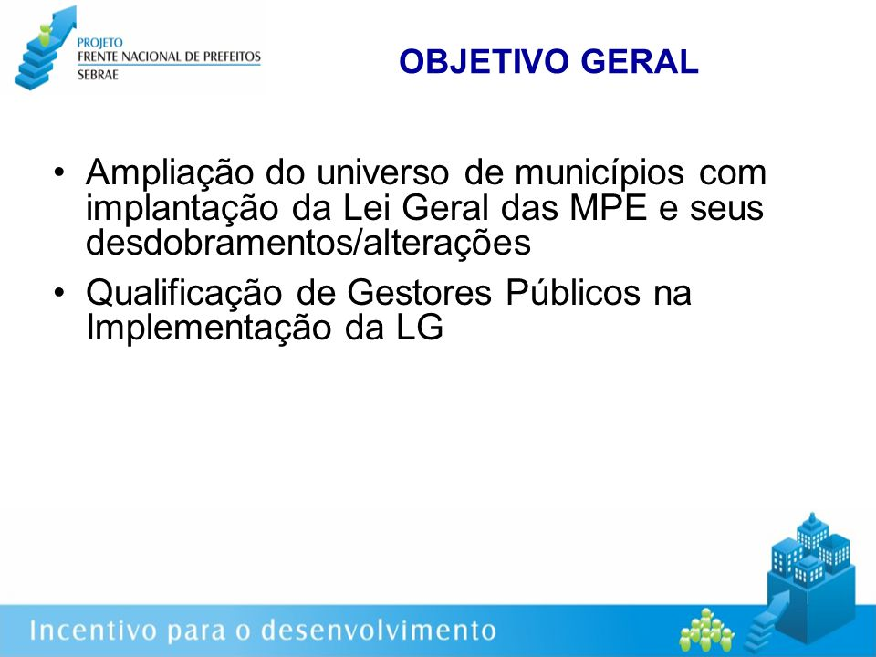 Mobilização Apoio Técnico Direto Apoio à implantação local da Lei Geral e à formalização do Empreendedor Individual em 20 municípios selecionados