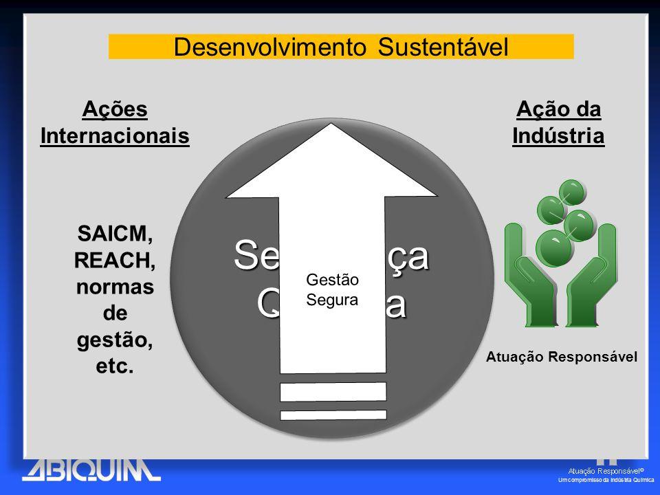 Desenvolvimento Sustentável Segurança Química Gestão Segura SAICM, REACH, normas de gestão, etc.