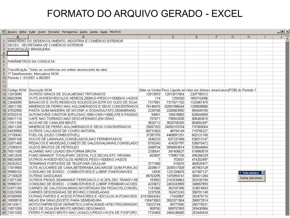 FORMATO DO ARQUIVO GERADO - EXCEL