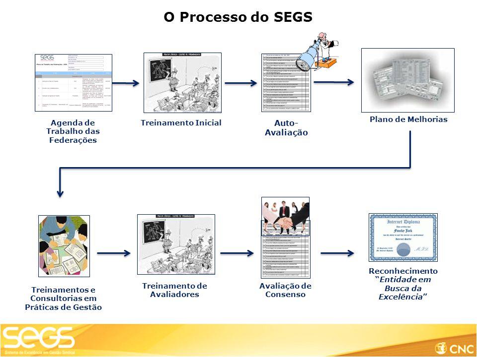 O Processo do SEGS Agenda de Trabalho das Federações Treinamento Inicial Auto- Avaliação Treinamento de Avaliadores Reconhecimento Entidade em Busca da Excelência Avaliação de Consenso Plano de Melhorias Treinamentos e Consultorias em Práticas de Gestão