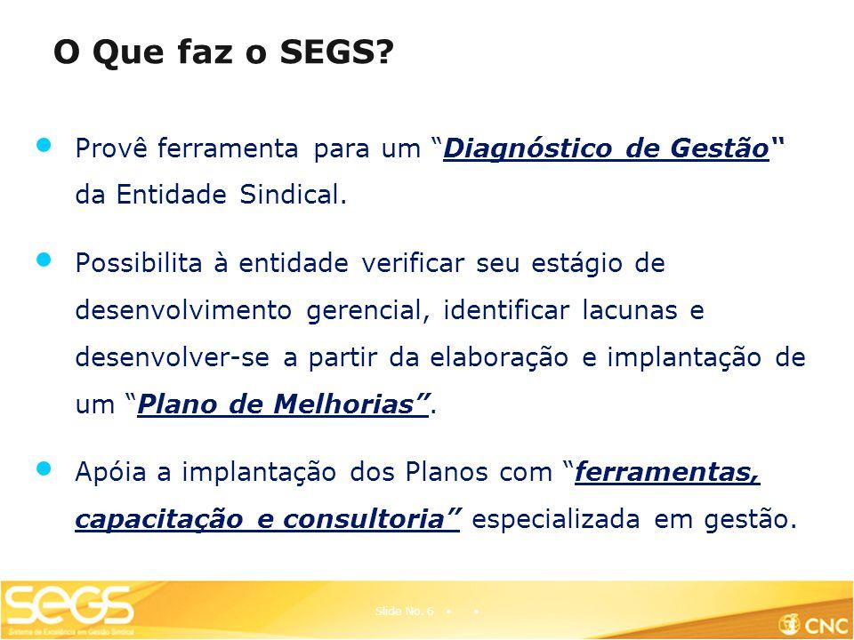 O Que faz o SEGS.Provê ferramenta para um Diagnóstico de Gestão da Entidade Sindical.