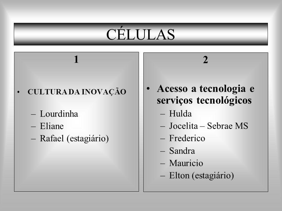 CÉLULAS 1 CULTURA DA INOVAÇÃO –Lourdinha –Eliane –Rafael (estagiário) 2 Acesso a tecnologia e serviços tecnológicos –Hulda –Jocelita – Sebrae MS –Fred
