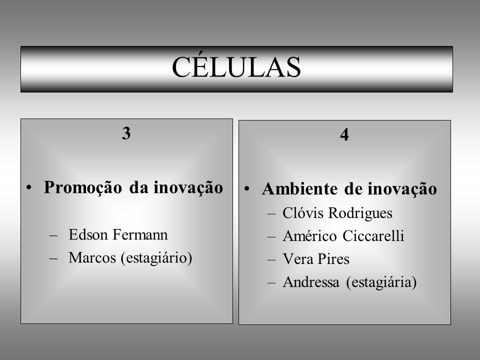 CÉLULAS 3 Promoção da inovação – Edson Fermann – Marcos (estagiário) 4 Ambiente de inovação –Clóvis Rodrigues –Américo Ciccarelli –Vera Pires –Andress