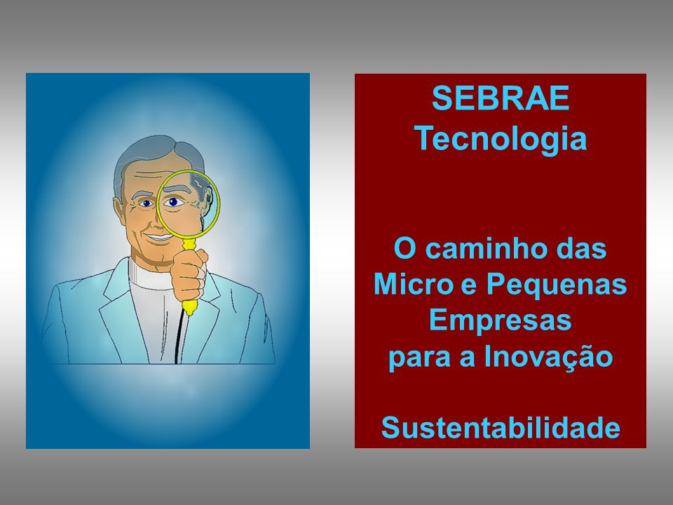 SEBRAE Tecnologia O caminho das Micro e Pequenas Empresas para a Inovação Sustentabilidade