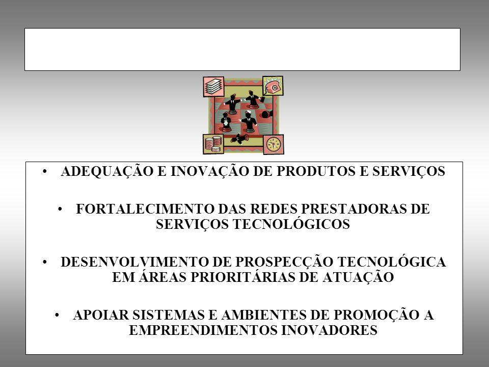 ADEQUAÇÃO E INOVAÇÃO DE PRODUTOS E SERVIÇOS FORTALECIMENTO DAS REDES PRESTADORAS DE SERVIÇOS TECNOLÓGICOS DESENVOLVIMENTO DE PROSPECÇÃO TECNOLÓGICA EM