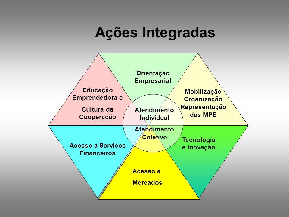 Tecnología e Inovação Mobilização Organização Representação das MPE Acesso a Mercados Acesso a Serviços Financeiros Educação Emprendedora e Cultura da