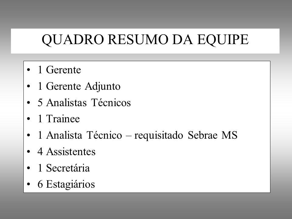 QUADRO RESUMO DA EQUIPE 1 Gerente 1 Gerente Adjunto 5 Analistas Técnicos 1 Trainee 1 Analista Técnico – requisitado Sebrae MS 4 Assistentes 1 Secretár