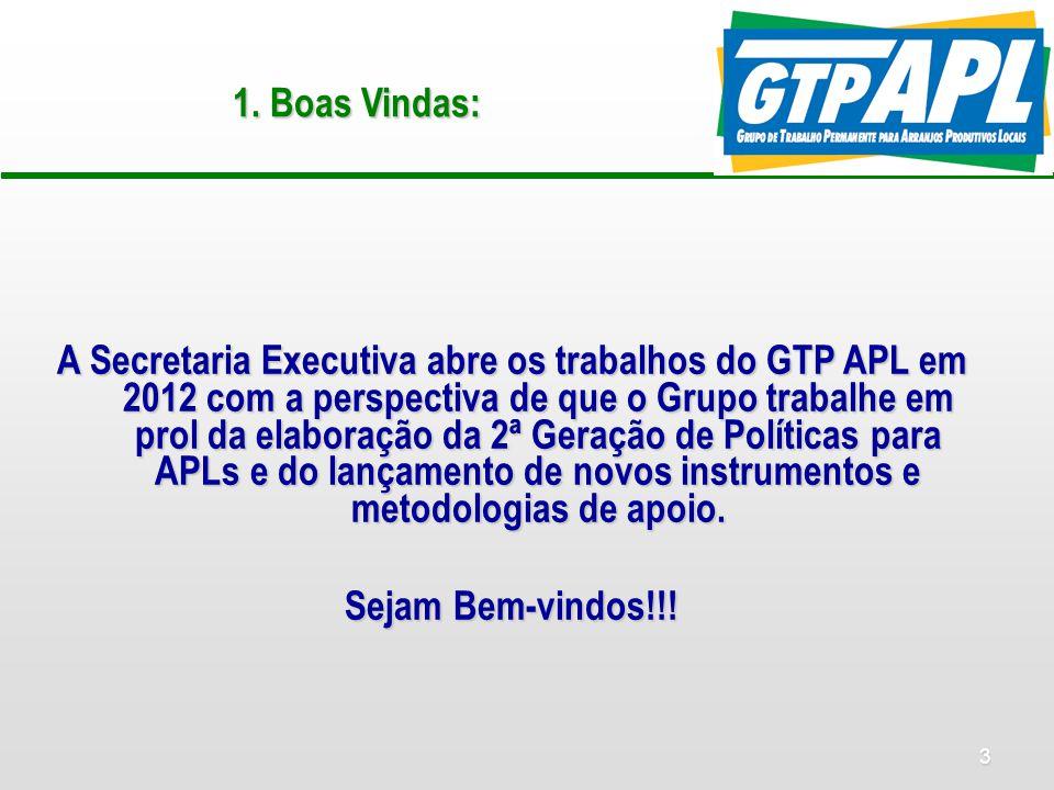 3 1. Boas Vindas: A Secretaria Executiva abre os trabalhos do GTP APL em 2012 com a perspectiva de que o Grupo trabalhe em prol da elaboração da 2ª Ge