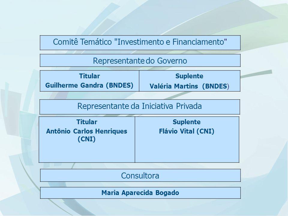 Comitê Temático Investimento e Financiamento Representante do Governo Titular Guilherme Gandra (BNDES) Suplente Valéria Martins (BNDES ) Representante da Iniciativa Privada Titular Antônio Carlos Henriques (CNI) Suplente Flávio Vital (CNI) Maria Aparecida Bogado Consultora