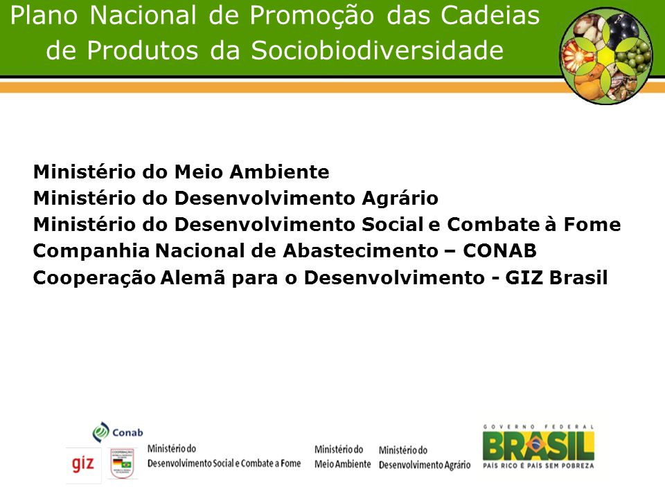 Plano Nacional de Promoção das Cadeias de Produtos da Sociobiodiversidade Ministério do Meio Ambiente Ministério do Desenvolvimento Agrário Ministério do Desenvolvimento Social e Combate à Fome Companhia Nacional de Abastecimento – CONAB Cooperação Alemã para o Desenvolvimento - GIZ Brasil